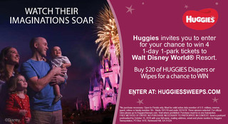 Enter For a Chance To Win Walt Disney World® Resort Tickets!